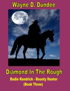 cover - DIAMOND IN THE ROUGH